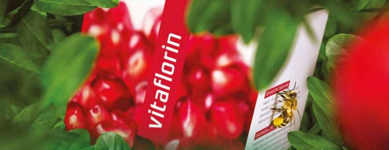 VITAFLORIN: új távlatok